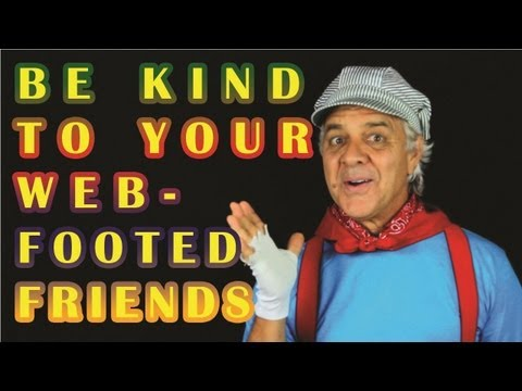 Be Kind to Your Web Footed Friends by The Learning Station