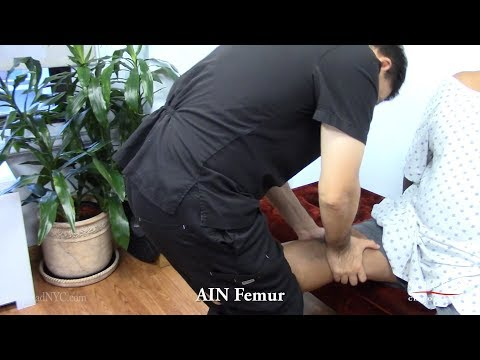 Gonstead AIN Femur Extremity Adjustment by Dr Suh Chiropractor