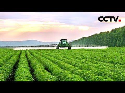 [世界看两会] 拉美 中国绿色发展和减贫努力获赞誉 | CCTV