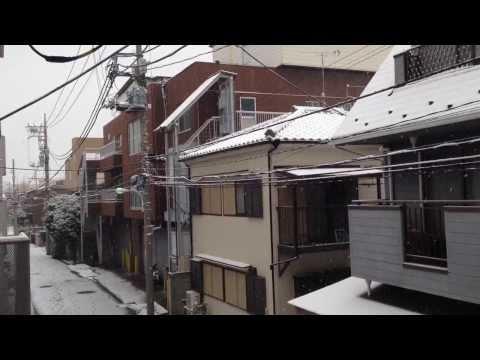 Heavy Snow Falls in Tokyo - Today February 8, 2014