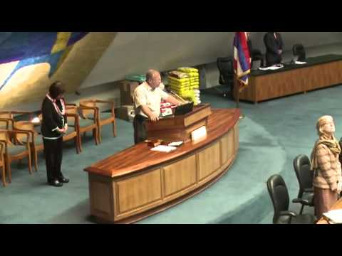 Activists Assaulted At Hawaii State Capitol 2010-29-04 [mirror]