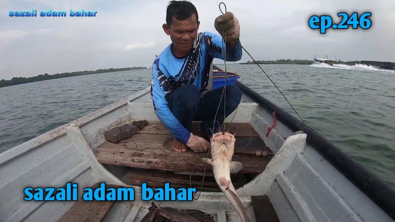 Rawai putus,ikan sembilang besar2 ep.246