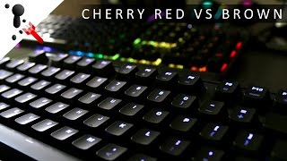 (110 wpm) Fast Typing Sound Test: Cherry MX Red VS Brown and O-Rings