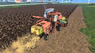 Farming Simulator 15. Уборка подсолнуха.