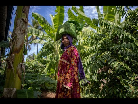 Entrepreneurs in action in Comoros (long version)