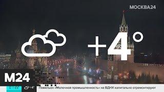 """Смотреть видео """"Утро"""": в Москве потеплеет до +3 градусов - Москва 24 онлайн"""