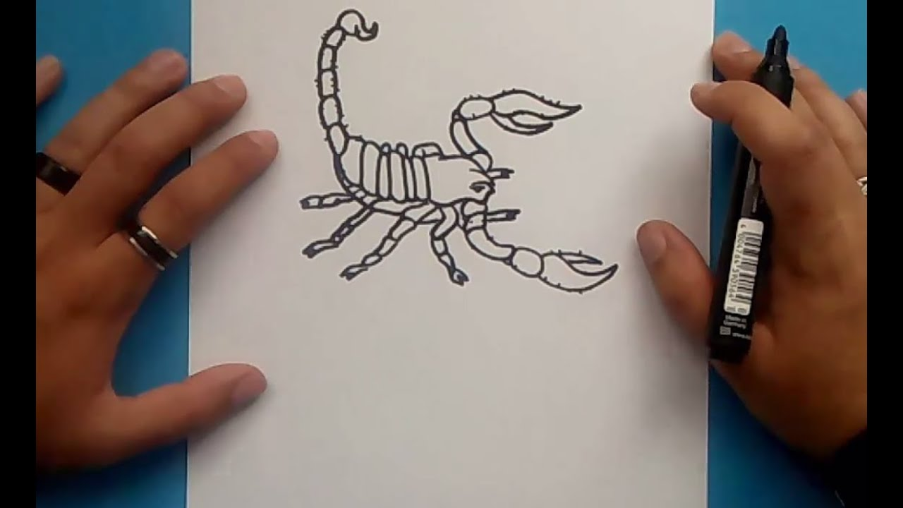 Como Dibujar Un Escorpion Paso A Paso 2 How To Draw A Scorpion 2