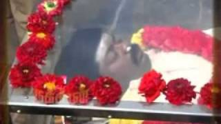 Murali's dead. www.tamilcnn.com thumbnail