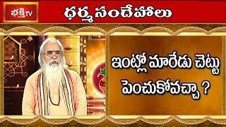 Can We Plant Beal (Maredu) Tree In The House | Dharma Sandehalu | Bhakthi TV