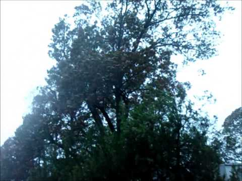 Hurricane Sandy on Long Island 10-29-12.wmv