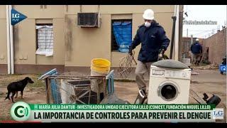 Con el aumento de las temperaturas es importante realizar controles para prevenir el dengue