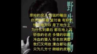 李荣浩《野生动物》 (歌词)