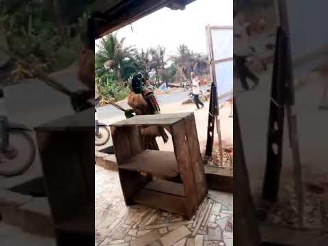 Download Agulu Anambra State Masquerade dance 2020