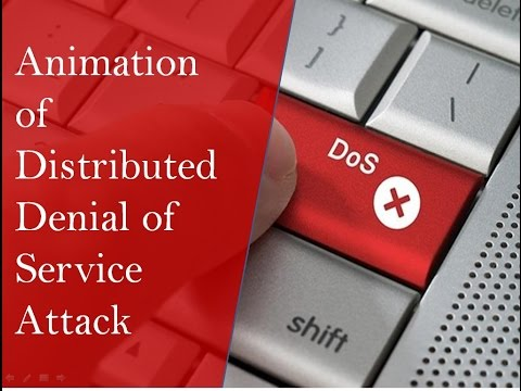 Animation of Distributed Denial Of Service Attack