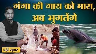 PM Modi ने जिस Gangetic Dolphin को बचाने की बात की थी उसकी UP में पीट-पीटकर हत्या। Ganga।Pratapgarh