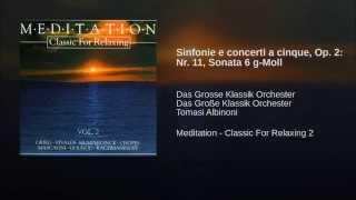 Sinfonie e concerti a cinque, Op. 2: Nr. 11, Sonata 6 g-Moll