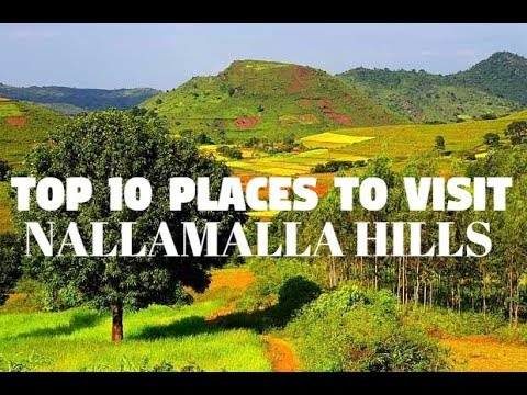 Top 10 Places to visit in Nallamalla Hills (Hill Station of Andhra Pradesh)
