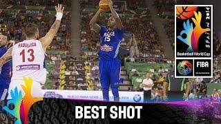 Serbia v France - Best Shot - 2014 FIBA Basketball World Cup