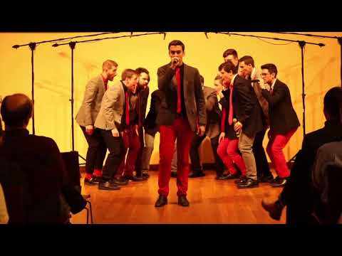 Space Oddity / Major Tom (opb. David Bowie / Peter Schilling) - Beelzebubs A Cappella