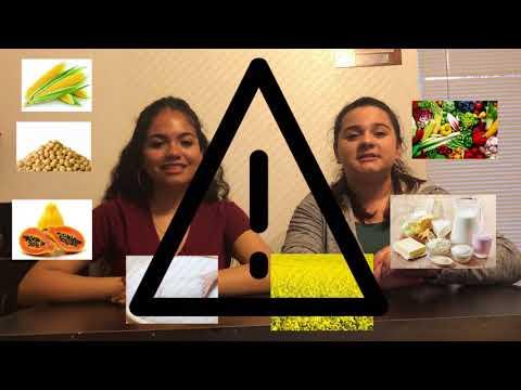 GMO talk show