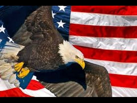 The American Bald Eagle National Geographic Documentary