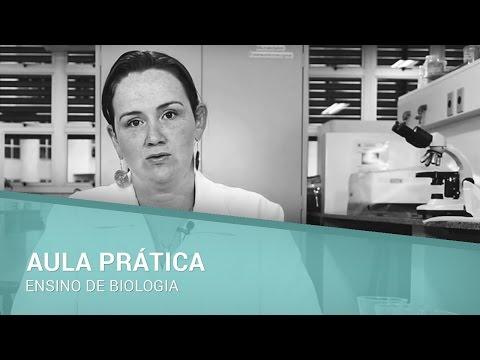 Aula prática: Exame parasitológico de fezes