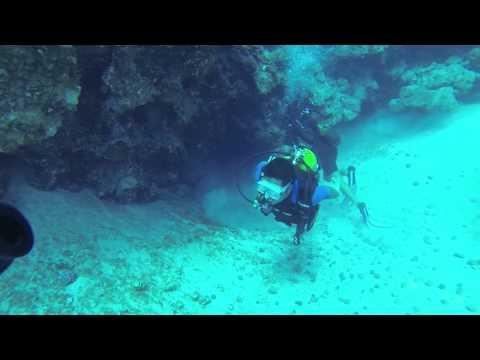 Scuba Diving Cuba - Playa Larga (Bay of Pigs)