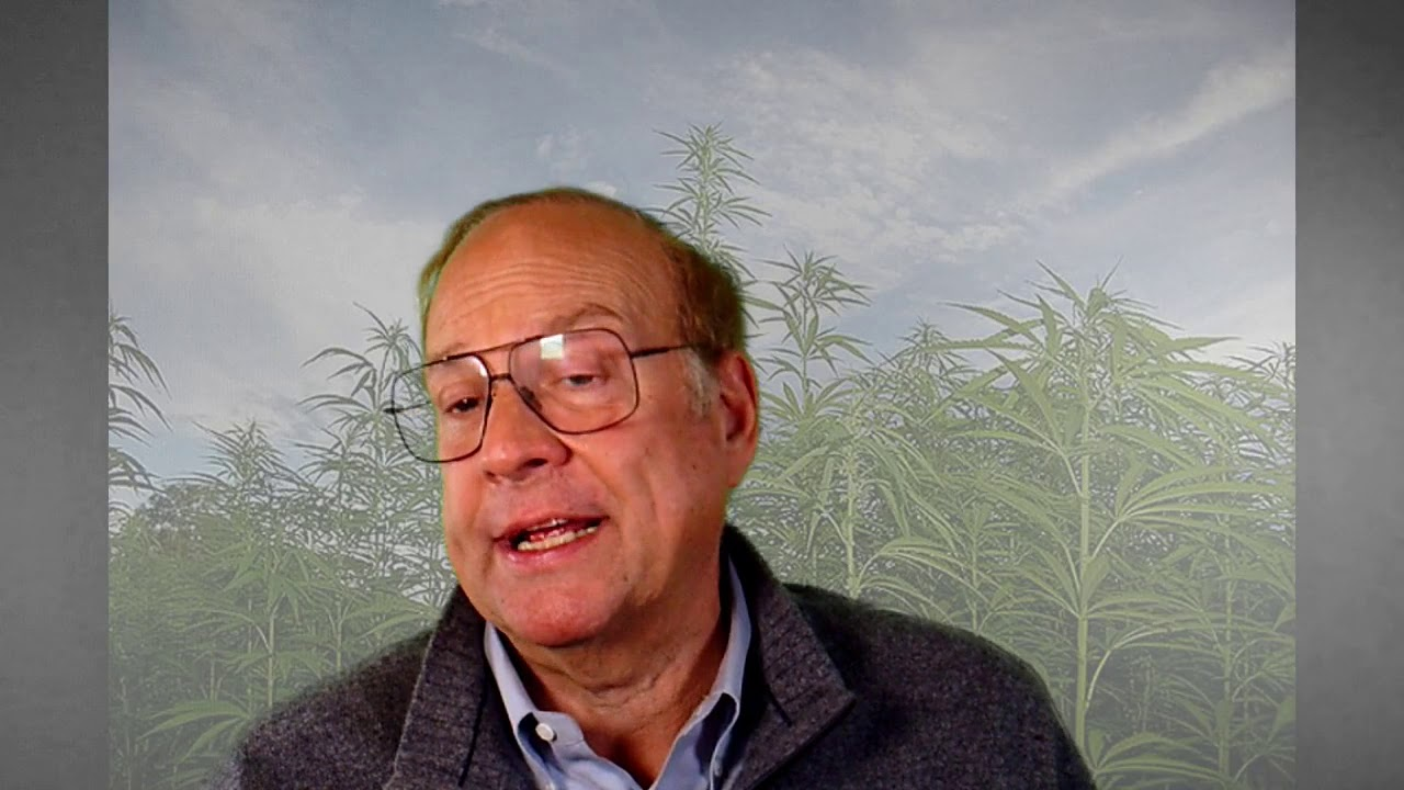 Do you want to grow hemp? Decisions you need to make and the first steps