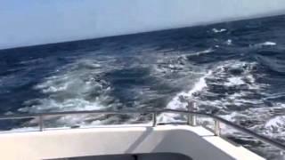 SeabirdWachingからの帰路のうねり(Gold Coast)