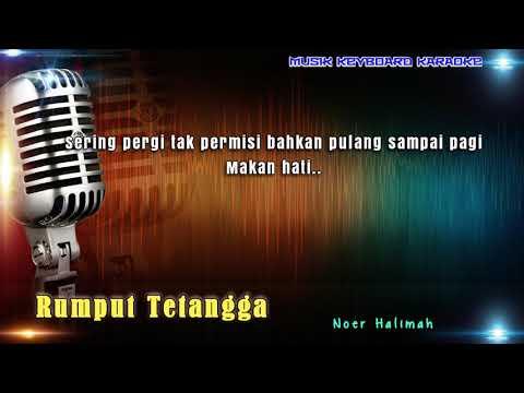 Noer Halimah - Rumput Tetangga Karaoke Tanpa Vokal