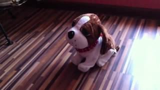 Видео обзор Мягкая игрушка   Танцующая ЧУДО Собака