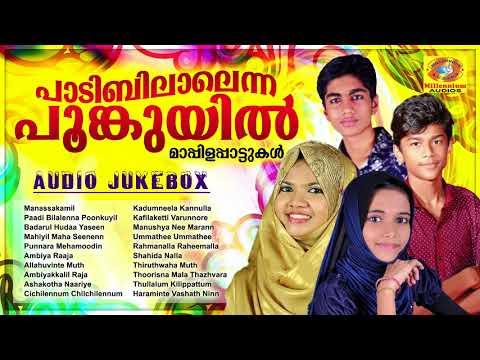 പാടിബിലാലെന്ന പൂങ്കുയിൽ | Meharin, Nuba Manjeri, Faisal Karad,Rabeeullah | Selected Mappila Songs