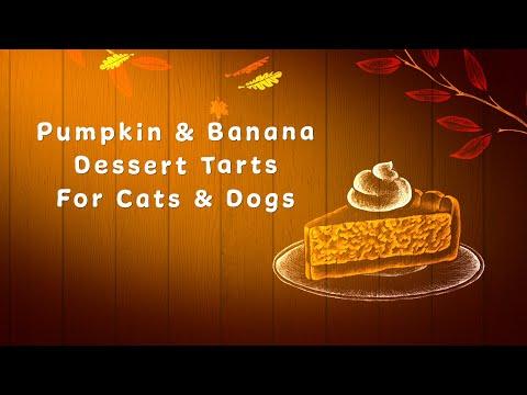 DIY Recipe: Thanksgiving Pumpkin Pie Tarts For Cats & Dogs