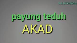 PAYUNG TEDUH - AKAD (MP3)