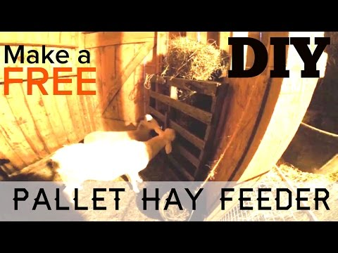 10 min DIY - How to Make A Free Animal Hay Feeder out of Pallets