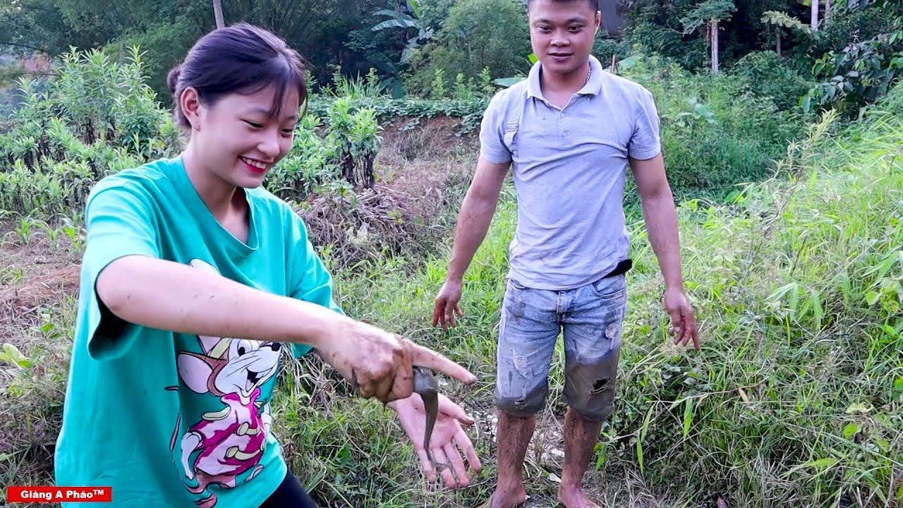 Thử thách bắt cá cùng Mẩy Thương - Cá Trê đồng nấu chuối