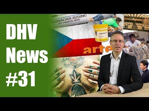 Modellprojekt Bonn | Cannabis-Agentur in Tschechien | DHV News #31