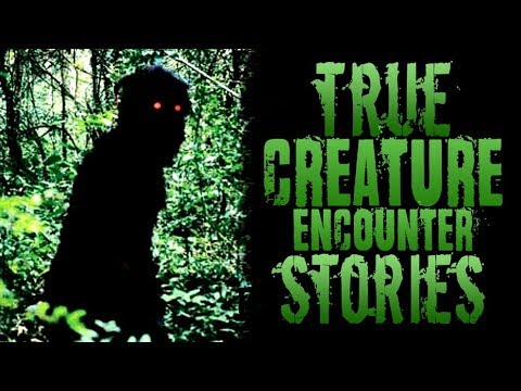 3 Creepy True Creature Encounter Stories [Skinwalker, Goatman, Wendigo]