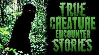 3 Creepy True Creature Encounter Stories [Skinwalker, Goatman, Wendigo]