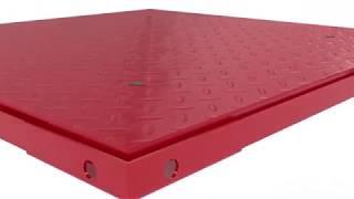 RPS Floor Scale