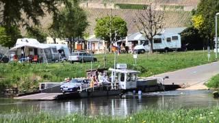 Blumenboot - Mainfähre Nordheim - Escherndorf Mainschleife 2015