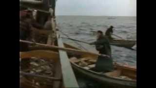 Gloucester Harborwalk 24: 1966 Cod Fishing Pesca Bacalhau, Newfound Land, Portugal, Canada, Creoula