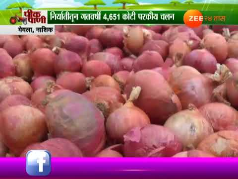 Nashik,Yeola Peekpani On Export Of Onion Less This Year Compare To Last Year