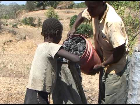 In Haiti: A road trip documentary (Español)
