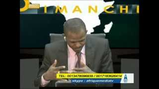 LE DEBAT PANAFRICAIN DU  24  05  2015(part1)
