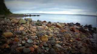 naturfilm trelde næs -  2011 Denmark