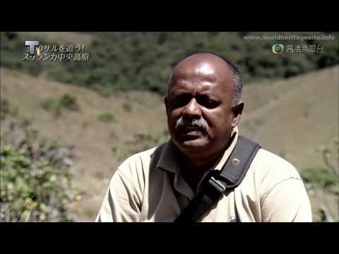[Cantonese] Sri Lanka world heriatge site :: Central Highlands of Sri Lanka 斯里兰卡中央高地