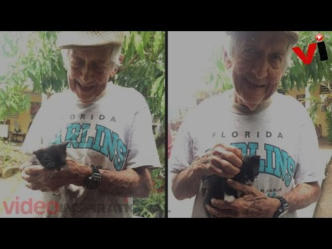 Grandpa Secretly Raises Stray Kittens After Wife Told He Couldn't Keep Them