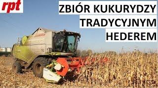 Claas Tucano 450 zbiera kukurydzę na ziarno bez przystawki