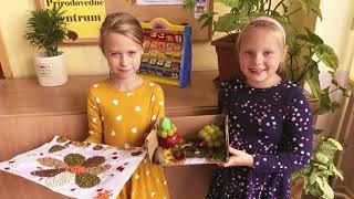 Super video o škole a žiakoch